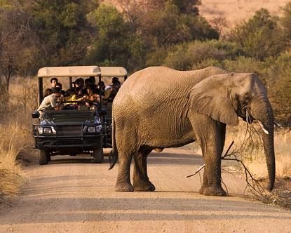 Garden City Jeep >> Pilanesberg National Park - Pilanesberg Game Reserve