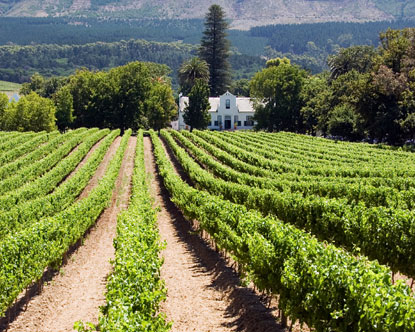 South africa wine tours south africa winery tour for Jardin winery south africa