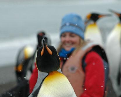 Antarctica tours for Can anyone visit antarctica