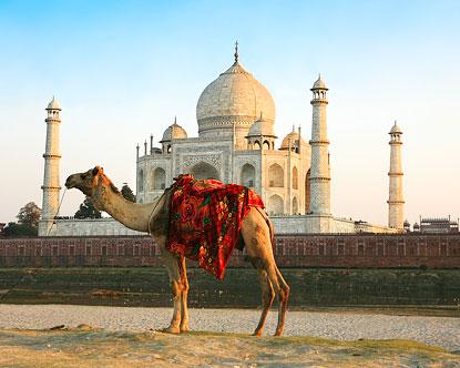 Agra India Agra