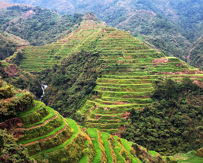 Banaue Rice Terraces Tour Packages