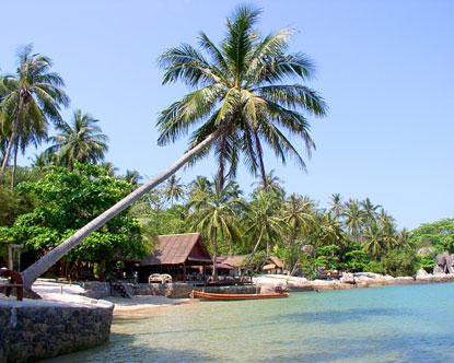 Koh Tao Diving In Koh Tao