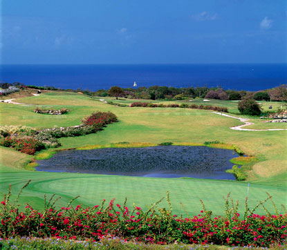 Green Monkey Golf Course Sandy Lane Barbados Resort