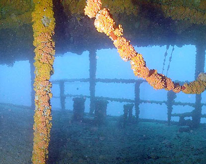Caribbean Shipwreck Best Shipwrecks In The Caribbean