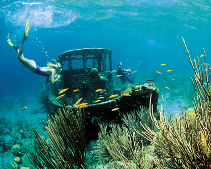 Best Off Beach Snorkeling Curacao