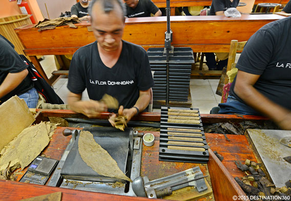 Cigar Factory Tours in Dominican Republic