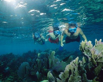 Best All Inclusive Snorkeling Beach Punta Cana