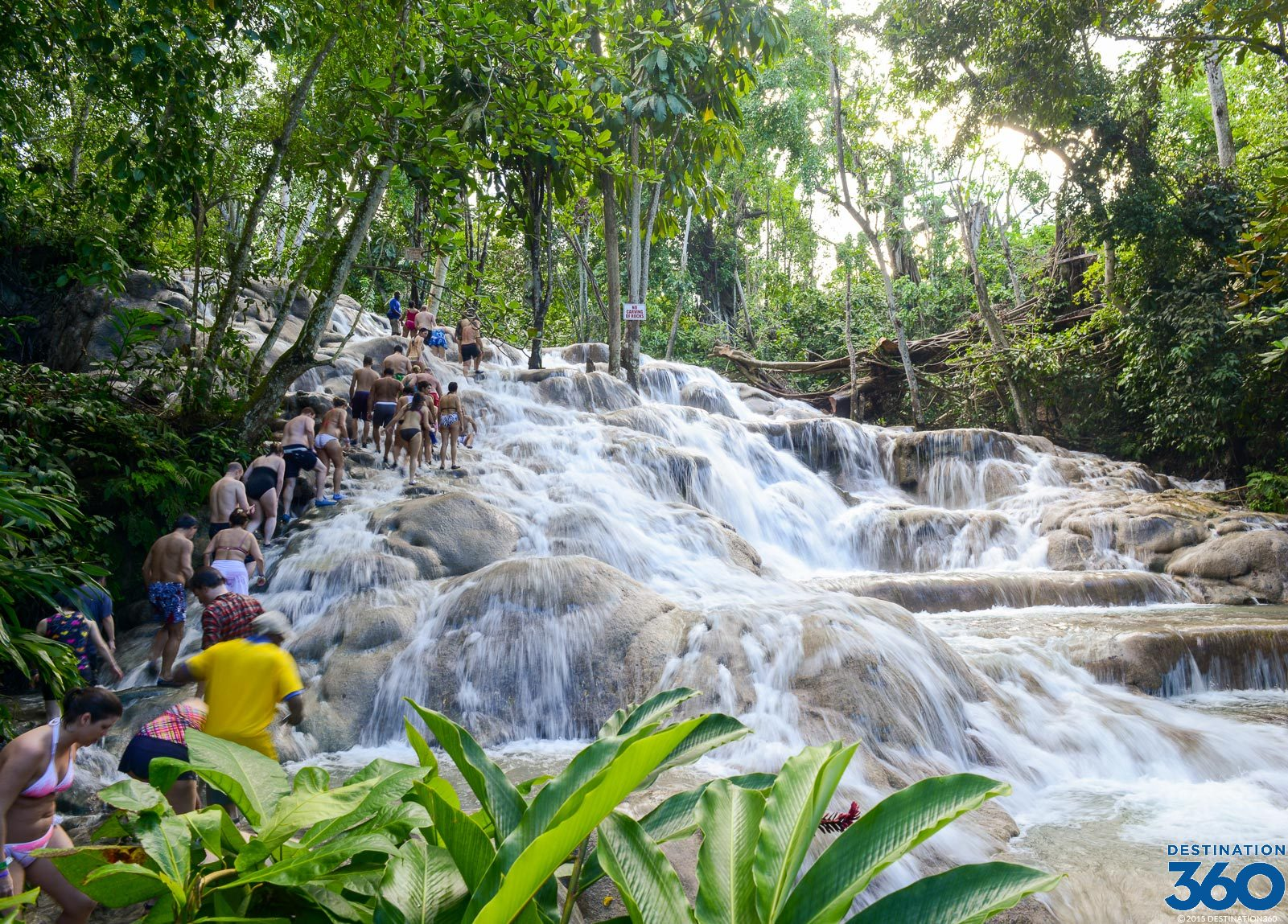 Dunns River Falls Virtual Tour