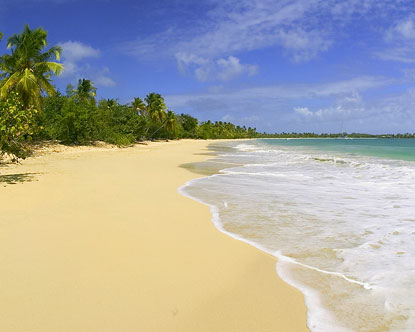 Beaches in Martinique