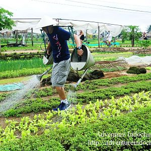 Become farmer in Hoi An
