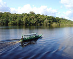 Things to do in the Amazon
