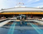 Holland America Amsterdam Pools