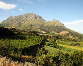 Stellenbosch South Africa