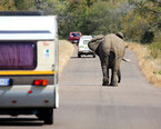 South Africa Eco Tours