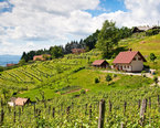 Slovenia Tourist Farms