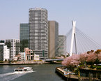 Sumida River Cruise
