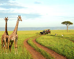 Cheap Africa Vacation Spots