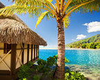 Vacation Packages to the Caribbean