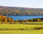 Finger Lakes Camping
