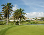 Things to Do in St Kitts