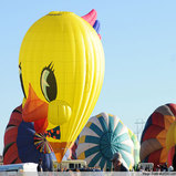 Yellow Bird Balloon