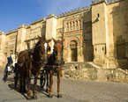 Cordoba Spain Attractions