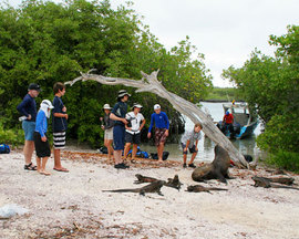 Galapagos Wildlife Tours
