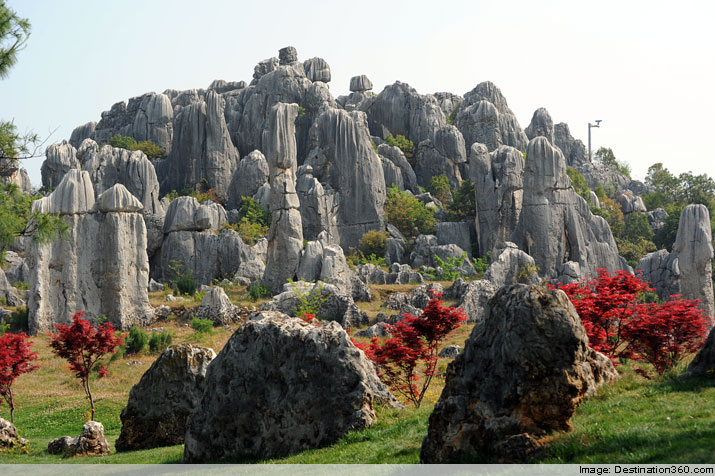 Kunming Stone Forest. China is full of natural wonders. One such wonder is the Stone Forest, which can be found near the city of Kunming in Yunnan Province. In this unique land, amazing rock formations are scattered across an area of more than 200 acres. Some of the rocks reach as high as a six story building, and several ponds only add to the scenic glory of it all. Many Kunming tours include a Stone Forest visit, as well as other fun adventures, such as a sightseeing excursion in the city's beautiful Western Hills area. No wonder tourism is on the rise in Kunming and Yunnan Province in general.
