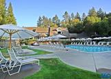 Luxury Hotels in Napa