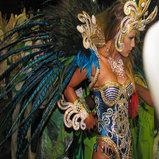 Rio De Janeiro Carnival Photos