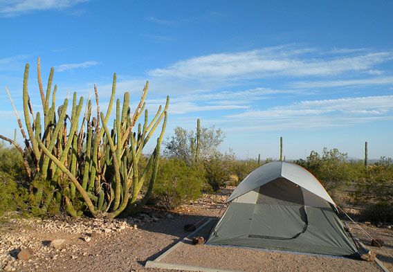 Organ Pipe National Monument Camping