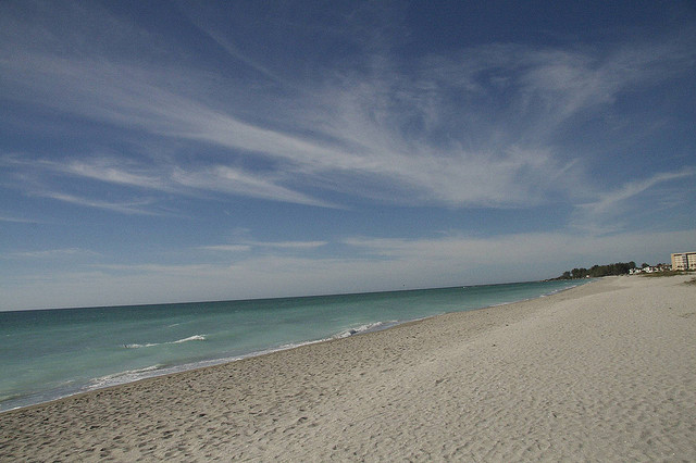Venice Florida Beaches