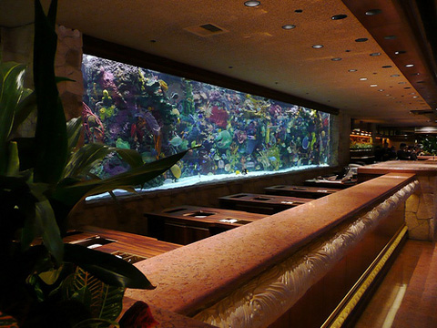 Aquarium at the Mirage