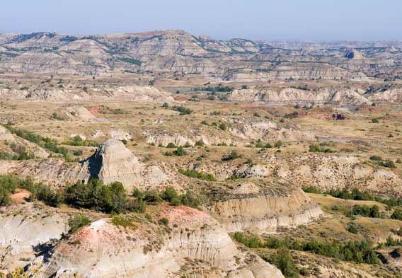 Roosevelt National Park & Badlands