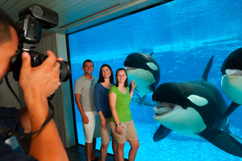 Tours of SeaWorld
