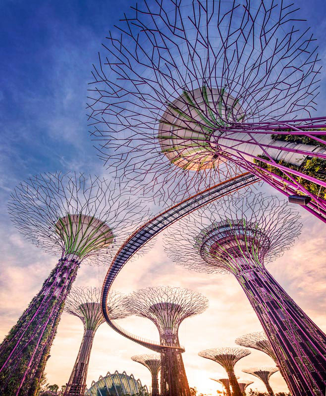 gardens-by-the-bay-supertrees.jpg