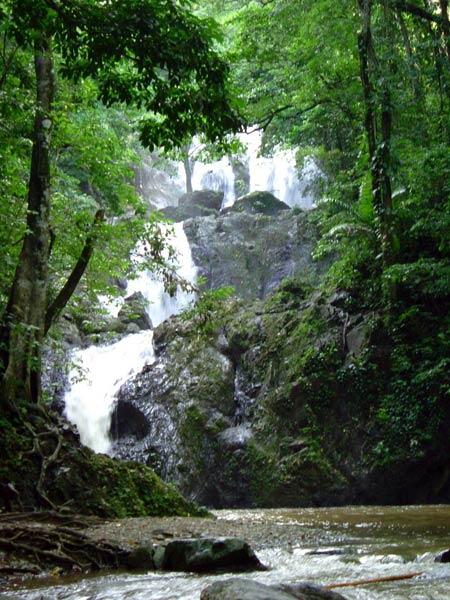 Maracas Falls Map - Trinidad and Tobago - Mapcarta  Trinidad And Tobago Maracas Falls