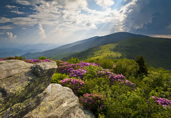 Blue Ridge Mountains Tennessee