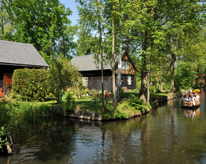 spreewald spree forest germany