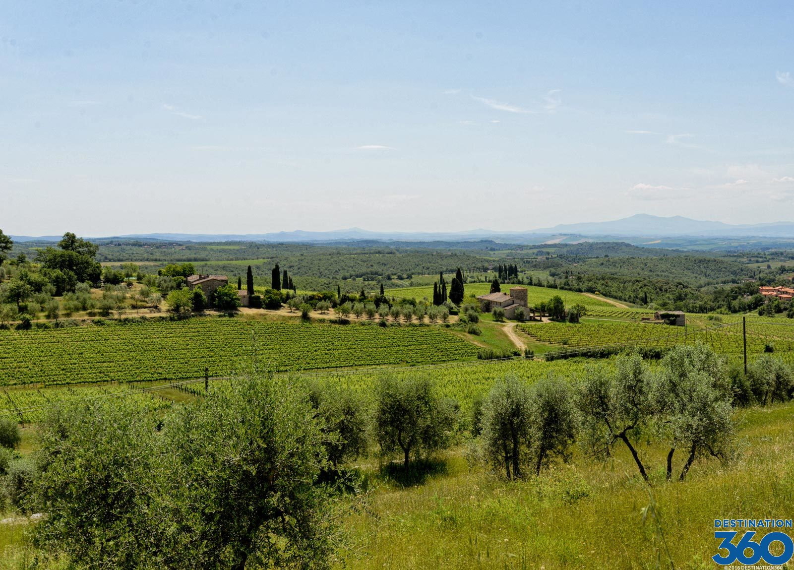 Wine Tours from Florence