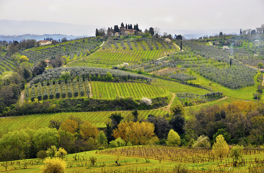 Tuscany Tours - Guided Tours Tuscany