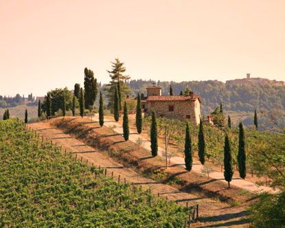 Wine Tours Chianti