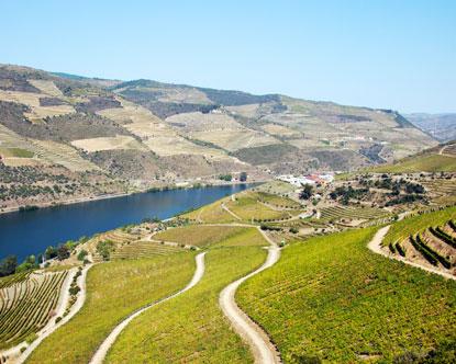 В Португалии открыт винный спа-отель