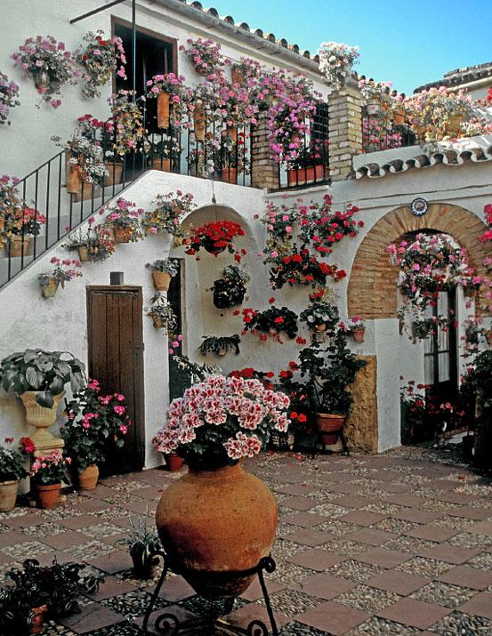 Festival de los patios cordoba patios - Patios interiores andaluces ...