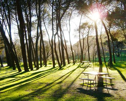 Casa de Campo - Casa de Campo Park in Madrid - Hotels Near