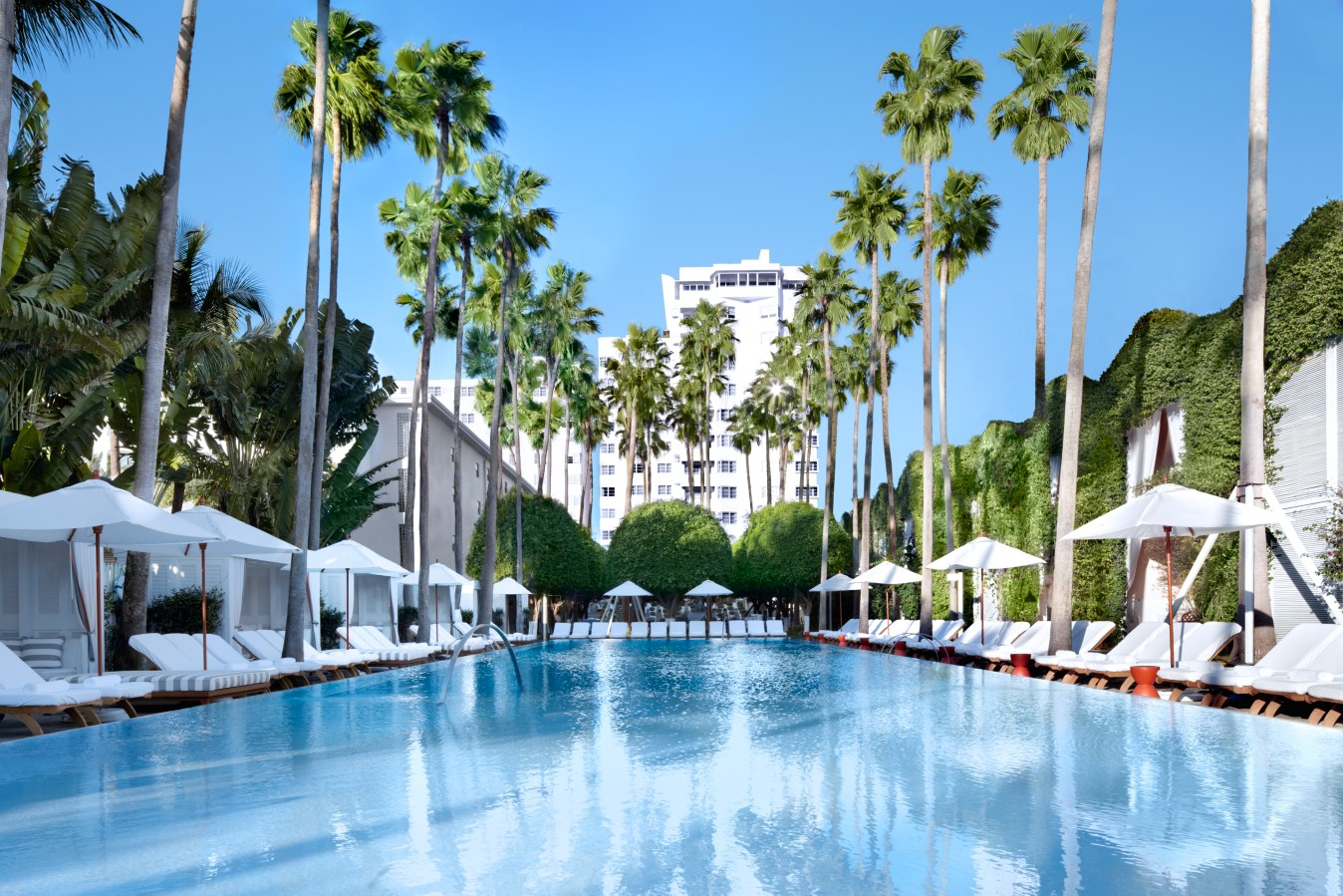 Pool at the Delano Miami Hotel
