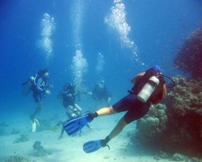 diving in israel eilat diving