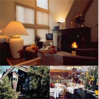 Executive Inn Whistler Village