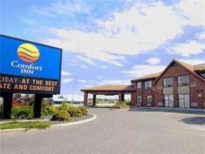 Comfort Inn Dryden Dryden Deals See Hotel Photos