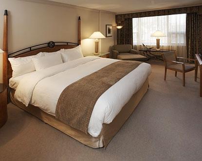 Toronto Luxury Hotels 5 Star Toronto Lodging